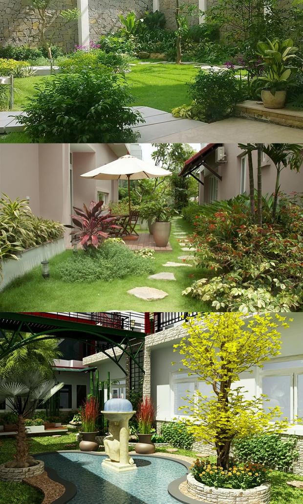 thiết kế sân vườn tiểu cảnh 05